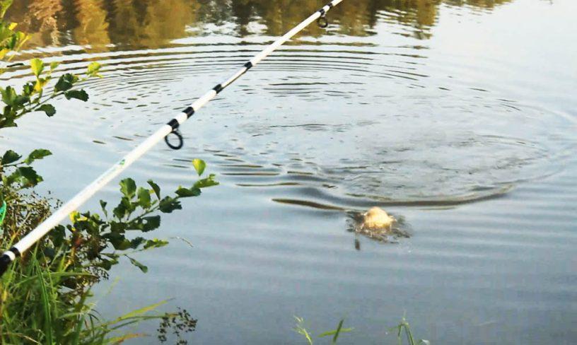 Рыбалка в деревне Голыгино