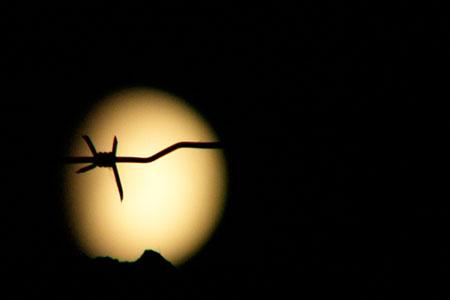 Лунный пейзаж. Дядя Митя